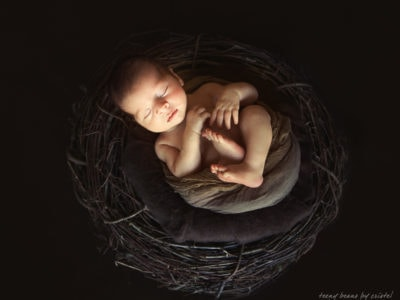 raleigh newborn photographer Benjamin 1