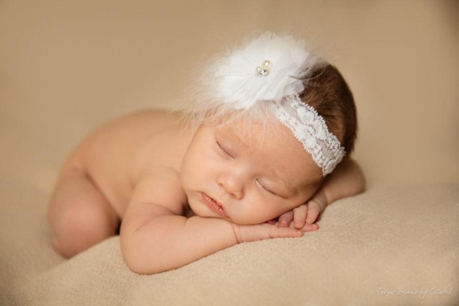 raleigh newborn photographer p1