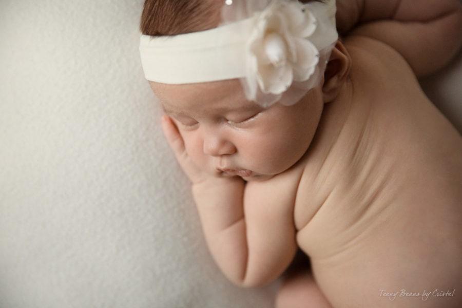 raleigh newborn photographer - P5