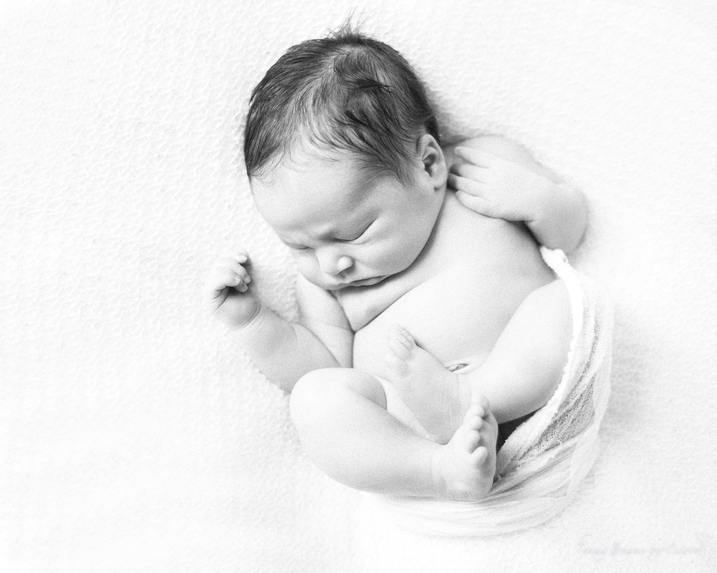 raleigh-newborn-photographer-baby-benjamin-7 raleigh newborn photographer - baby benjamin