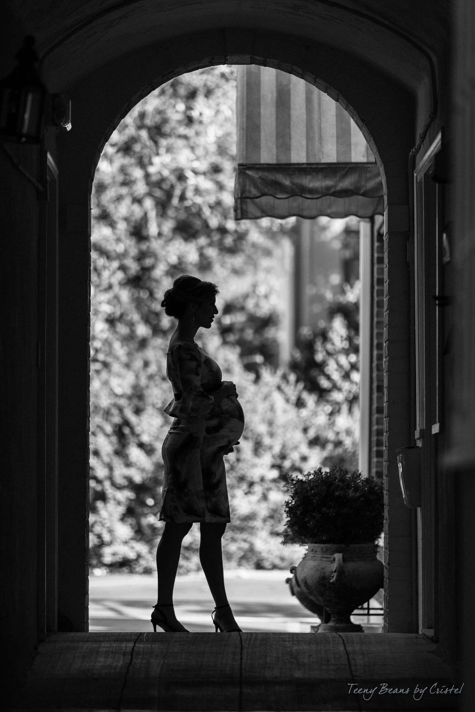 Raleigh-Maternity-Photography-Axia-Zach-3