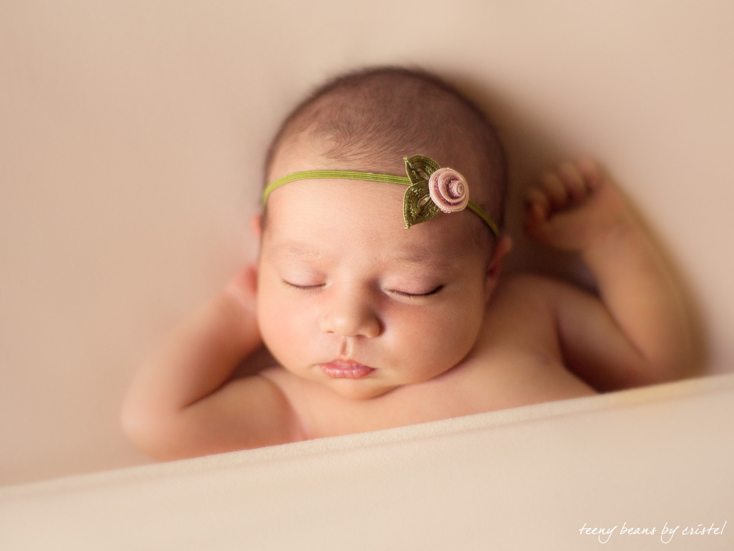 raleigh newborn photographer - baby sleeping flower color