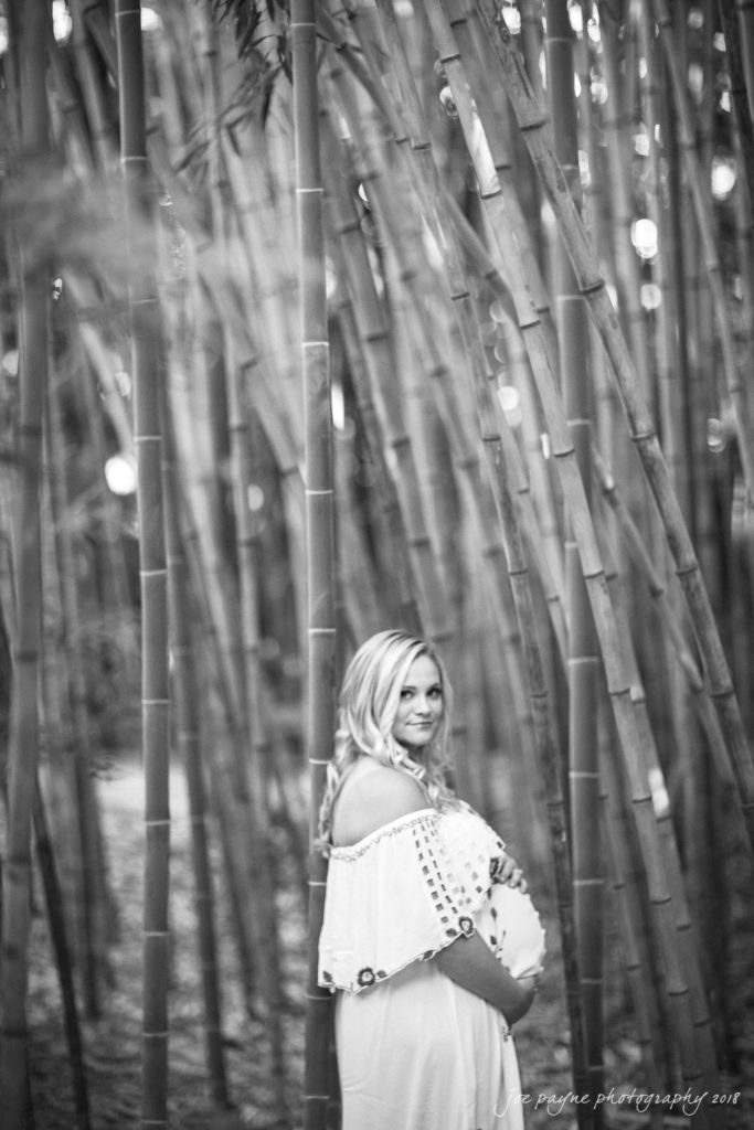 aleigh-Maternity-Photographer-Hallie-Cullen-1-683x1024 duke gardens maternity session - hallie & cullen