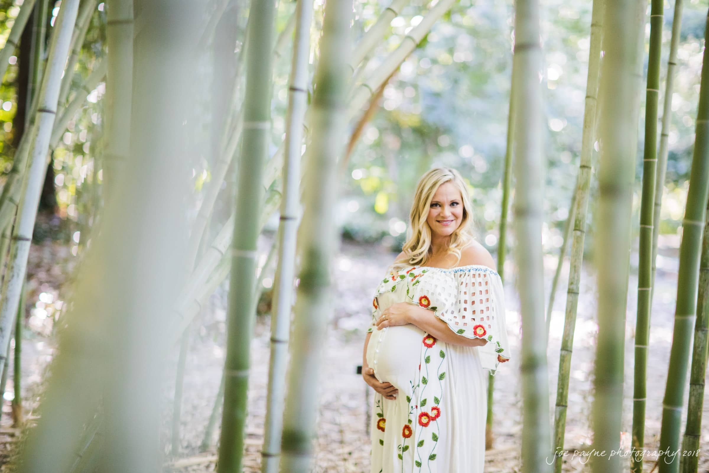 aleigh-Maternity-Photographer-Hallie-Cullen-2 duke gardens maternity session - hallie & cullen