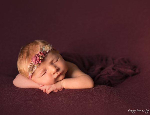 raleigh newborn photographer - audrey 7