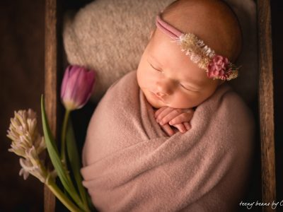 raleigh newborn photographer - eva 1