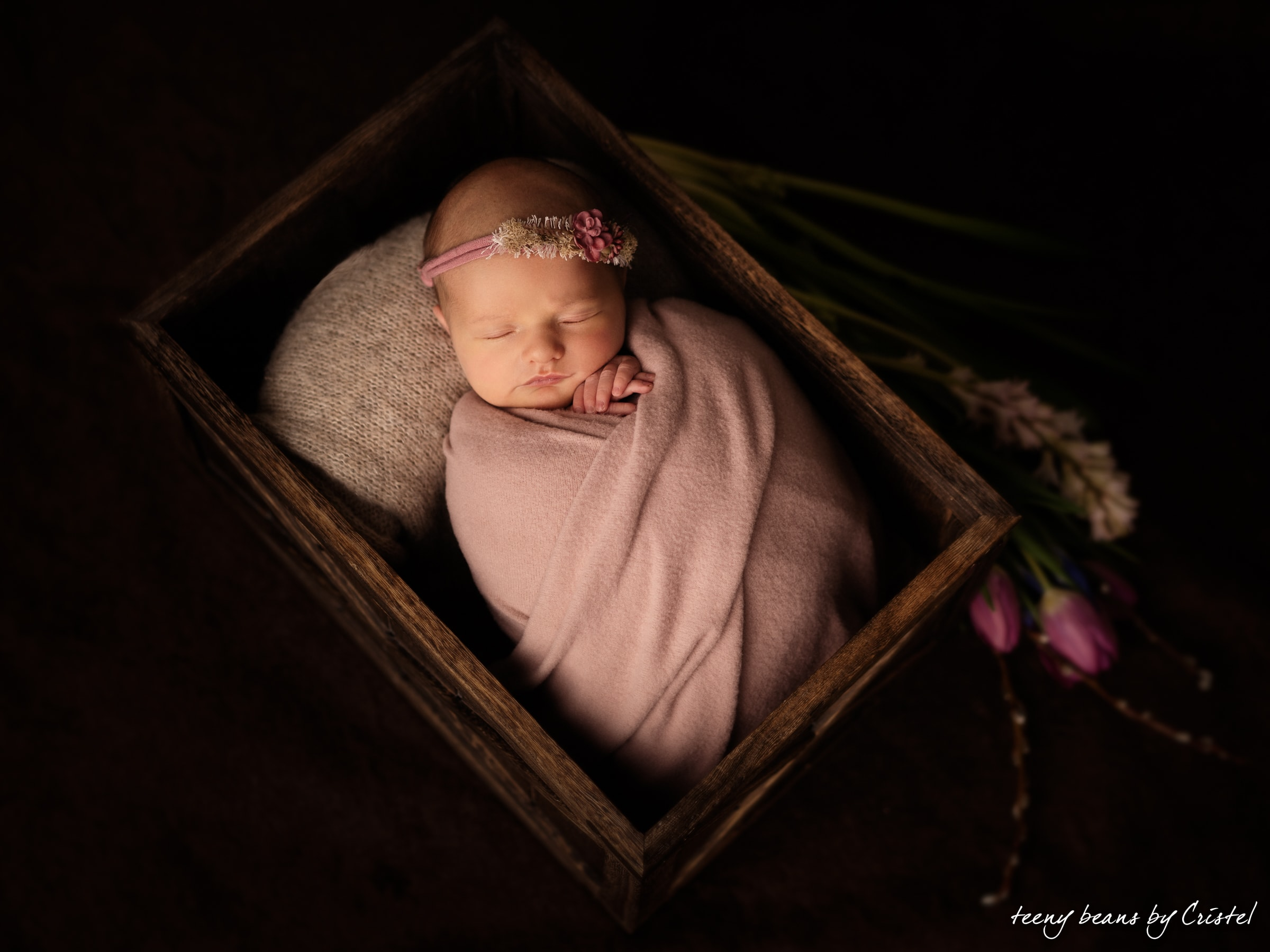 EvaNewborn-29 raleigh newborn photographer - baby eva