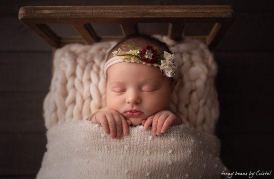 raleigh newborn photographer – baby evelyn