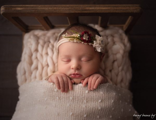 raleigh newborn photographer - baby evelyn 4