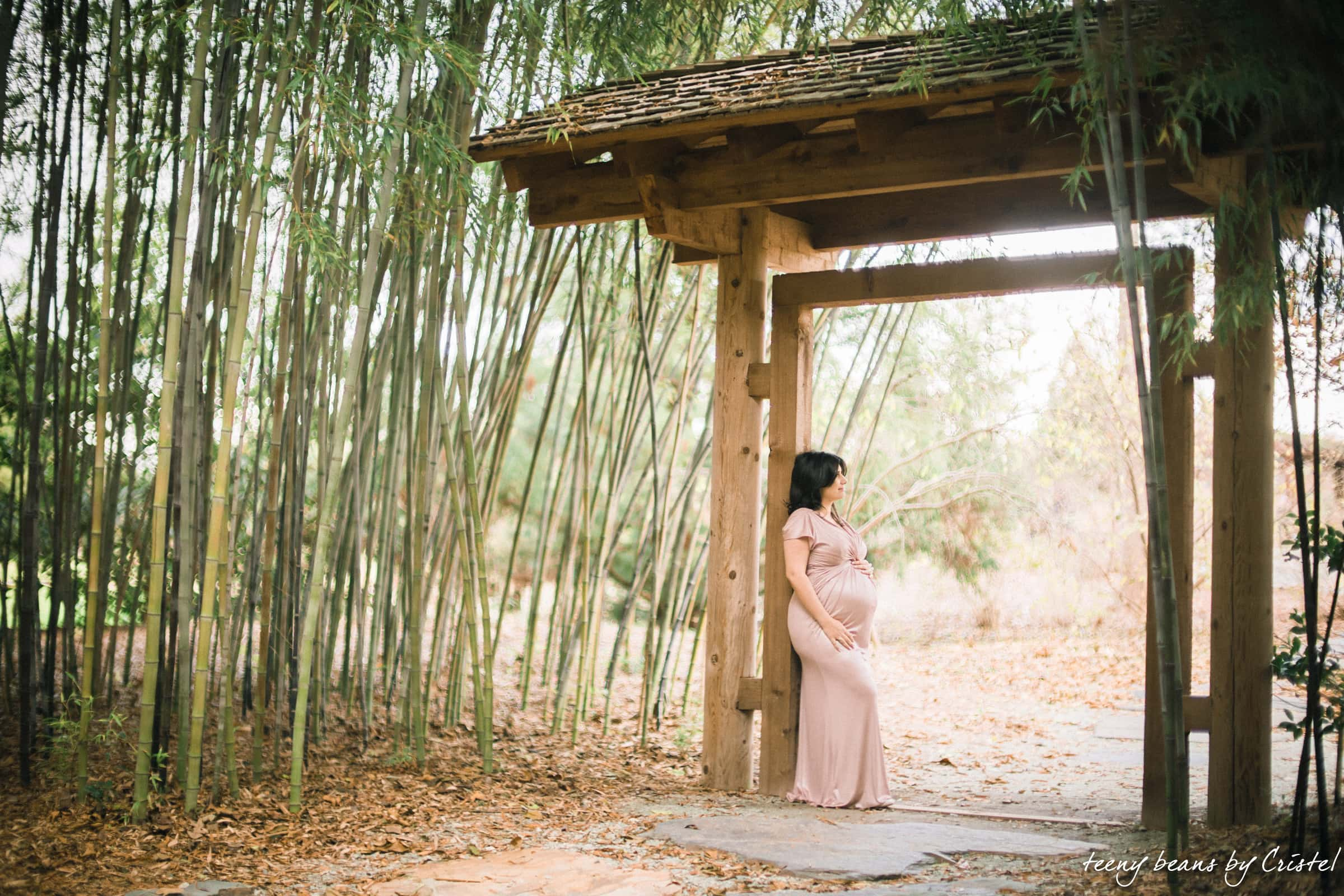 Duke-Gardens-Maternity-Portrait-Photography-Ary-18