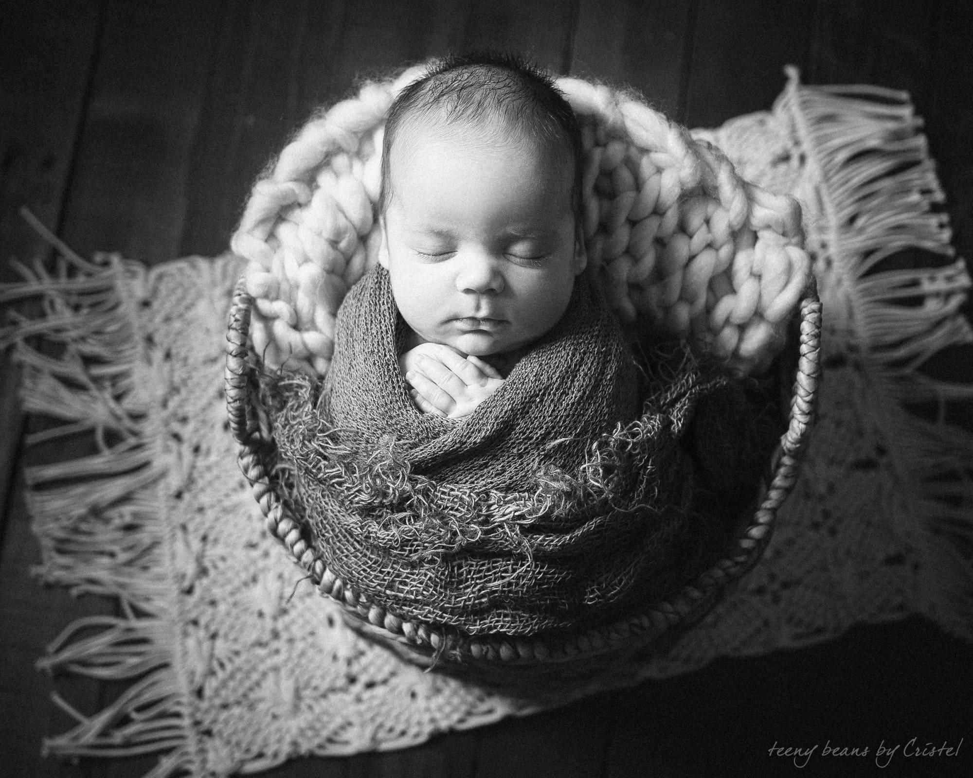 raleigh newborn photographer – liam & noel