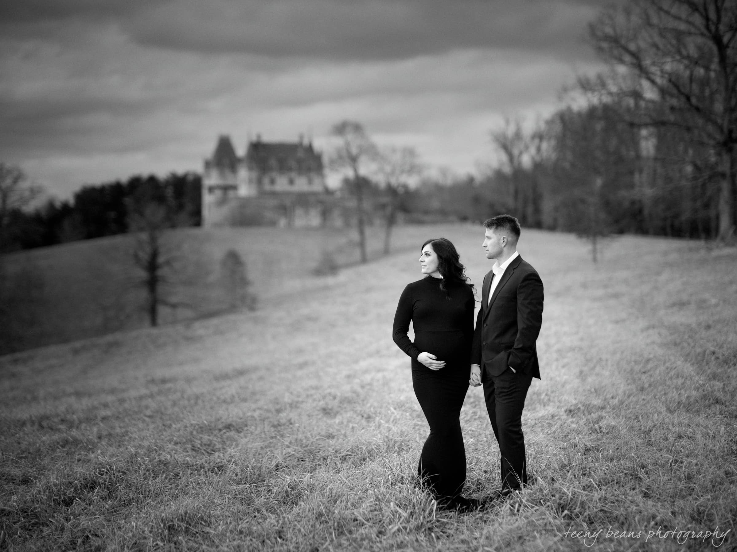 biltmore photographer – erin's maternity session