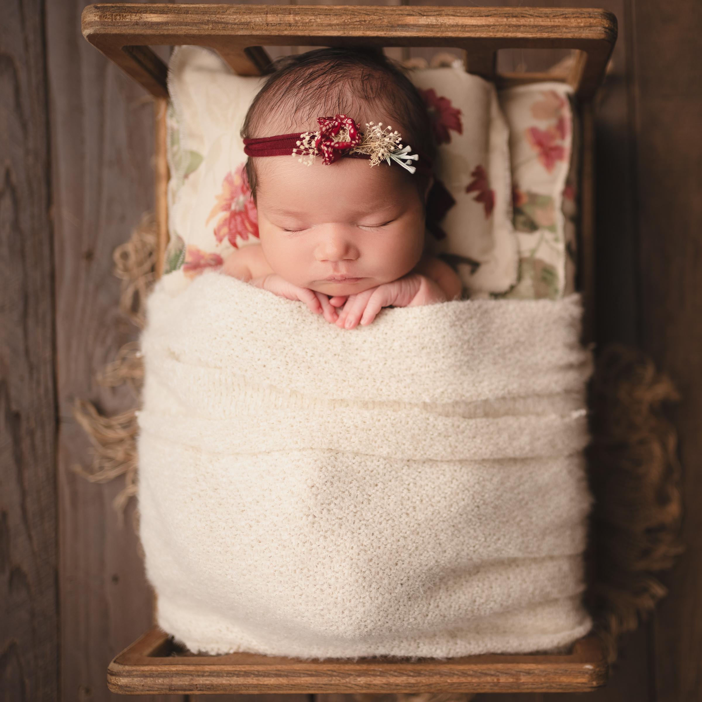 raleigh newborn photographer - baby helena 8