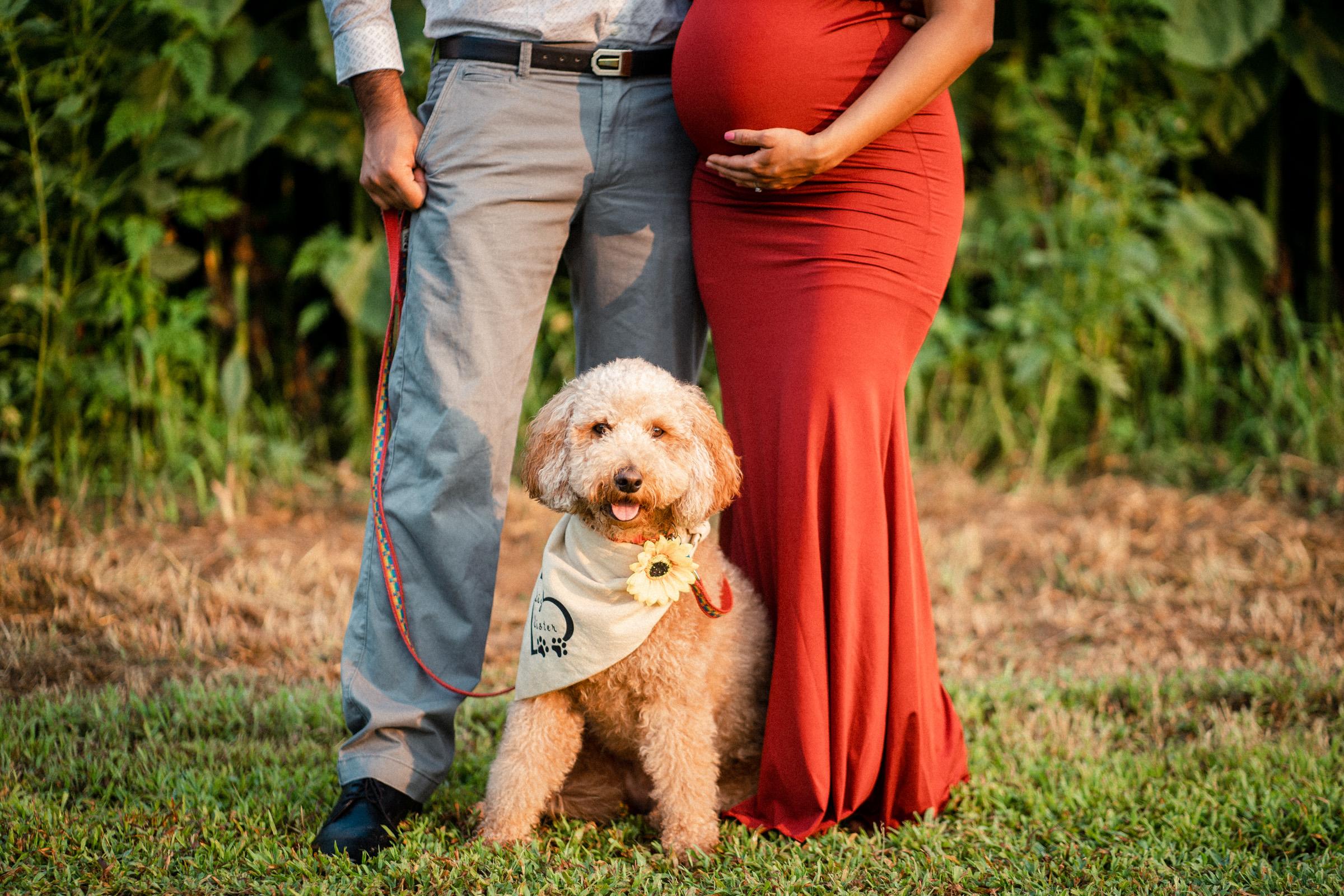 Raleigh Maternity Photographer Neha 2