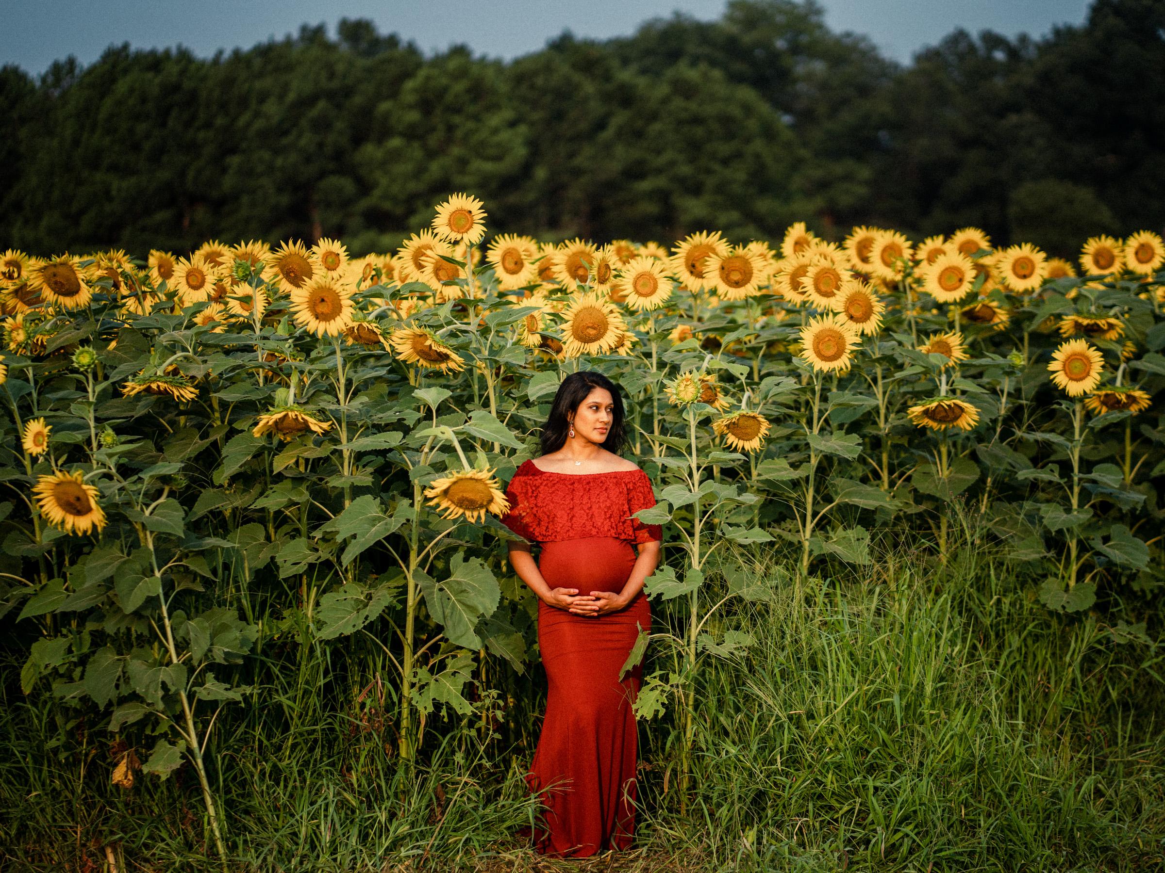 Raleigh Maternity Photographer Neha 6